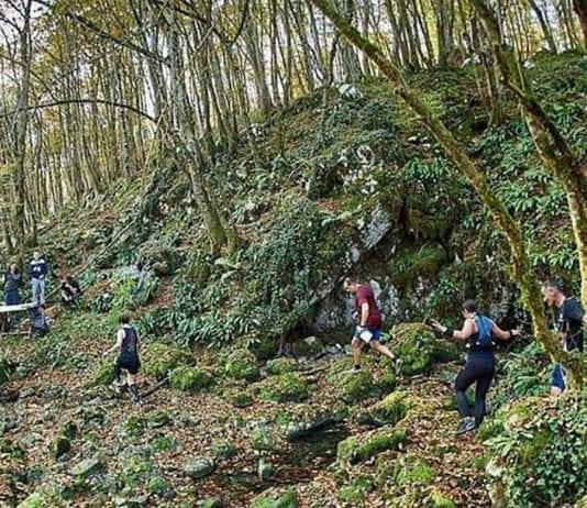 Barac Trail